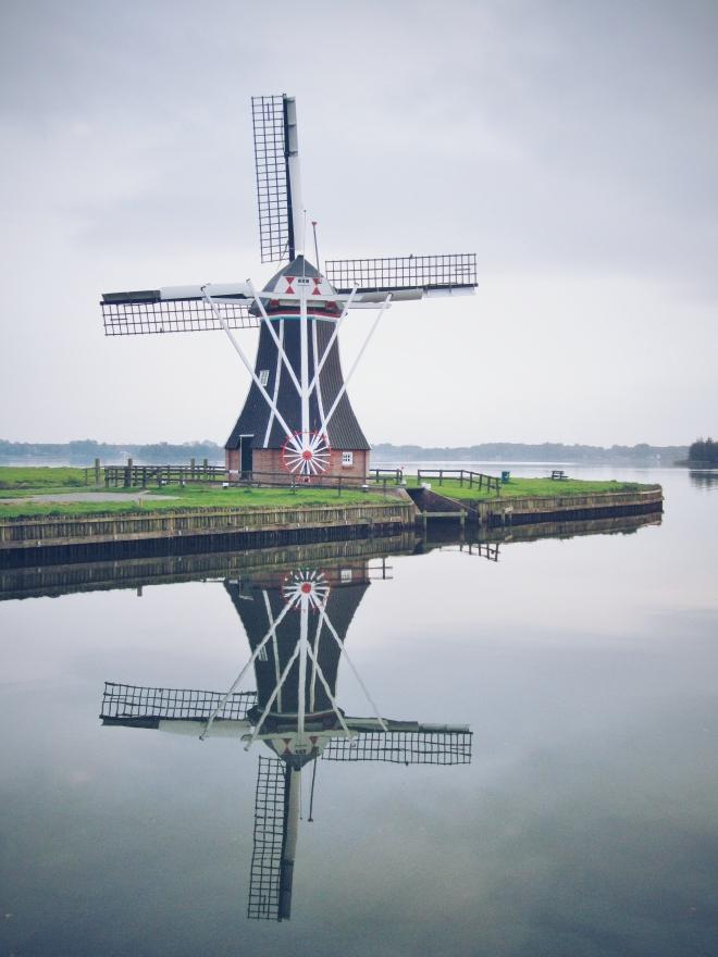 Groningen Hollanti Eevagamunda