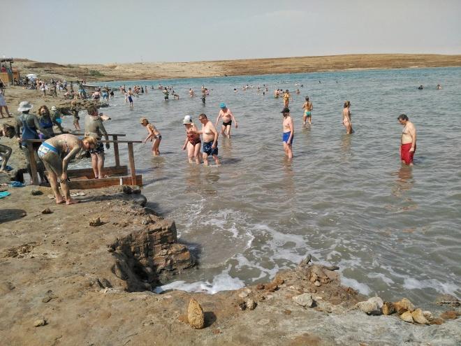 eevagamunda kuollutmeri rannalla