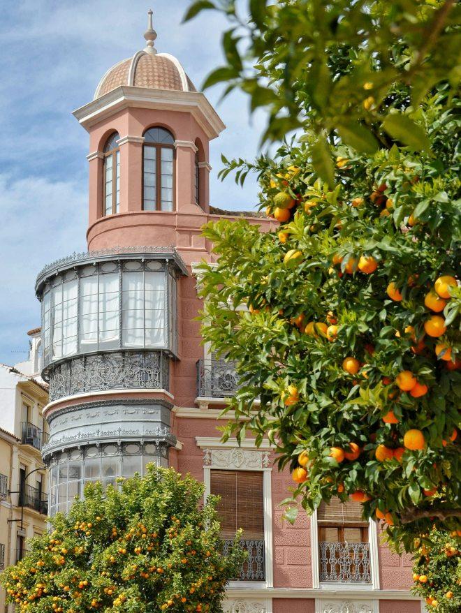 Antequerassa punainen talo ja appelsiinipuu